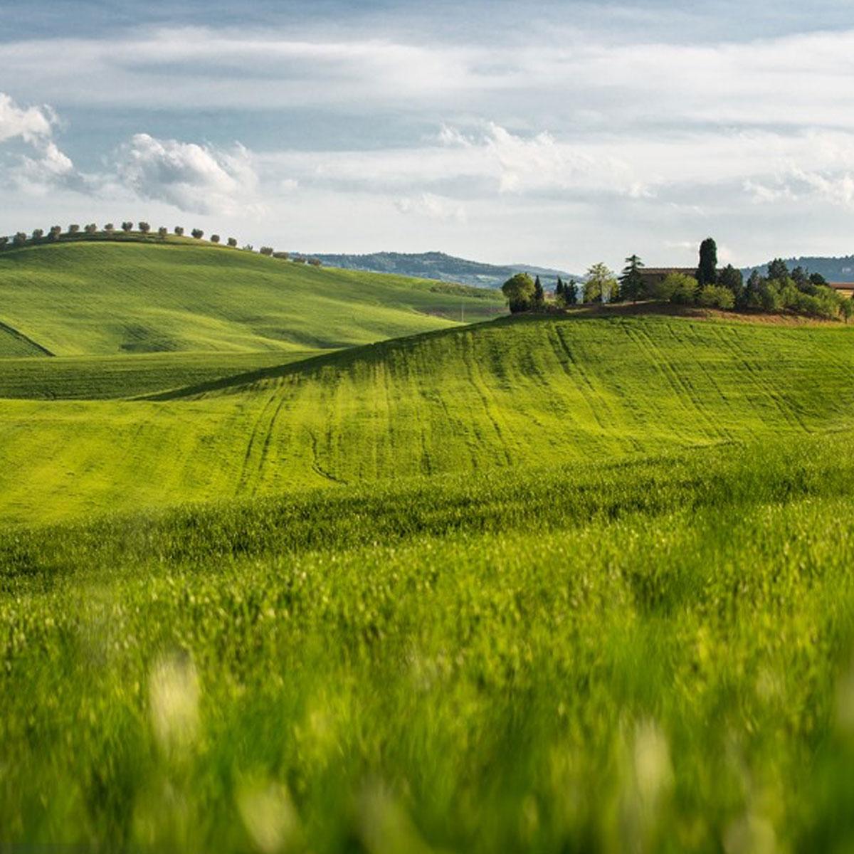 val d'orcia, colline senesi, colline toscane